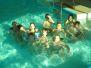 Mladí hasiči v bazénu- Všestary 16.3.2013