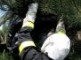 Likvidace nebezpečného hmyzu 20.5.2011
