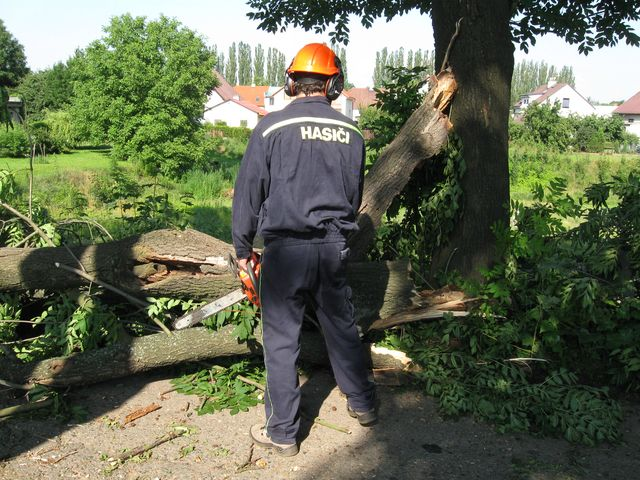 Odstraňování spadlého stromu v ul. V Aleji